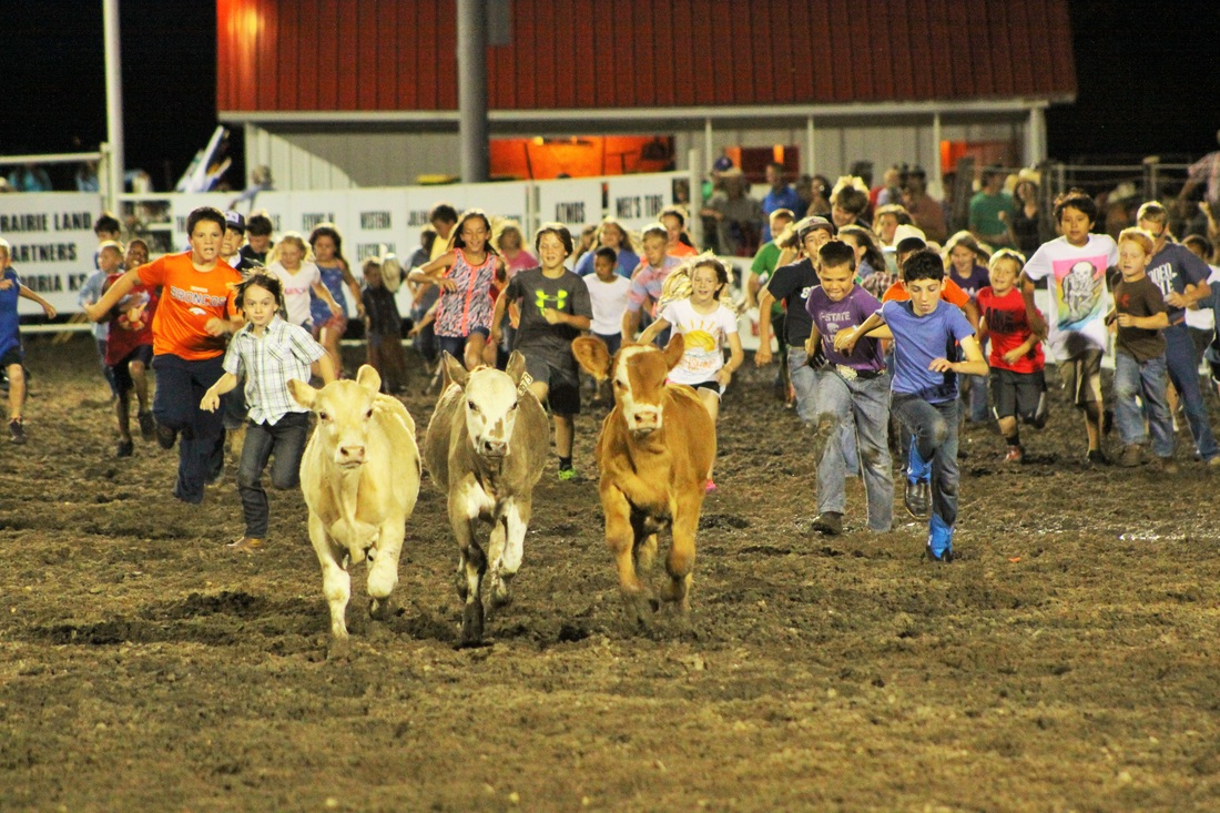 Kids Activities Flint Hills Rodeo